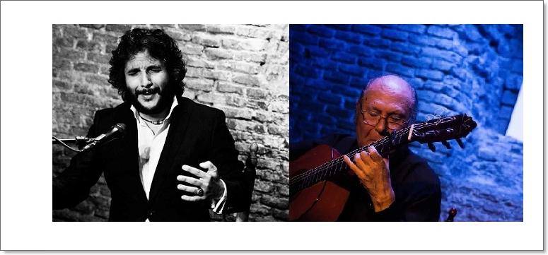 Damos la bienvenida a la nueva web del Círculo Flamenco deMadrid