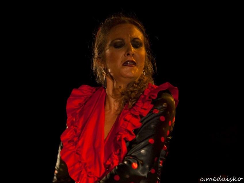 """#cronicasgraficas Viernes Flamenco de Jerez 2019: Peña """"Los Cernícalos"""""""