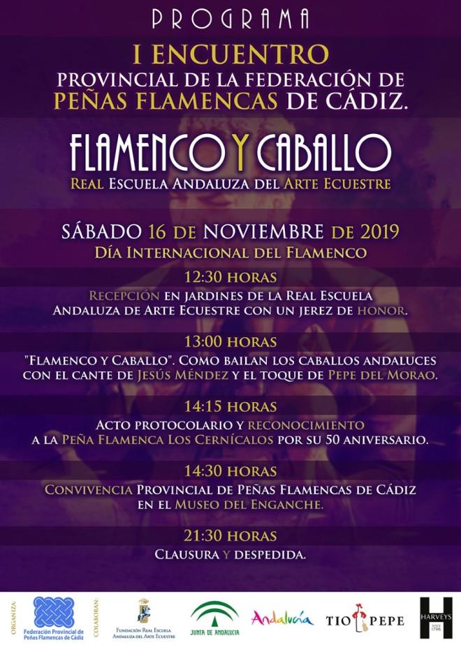 flamencoycaballorealescuela