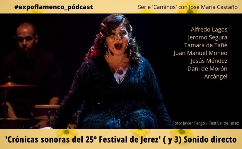#expoflamenco_pódcast: Crónicas sonoras del Festival de Jerez (y3)